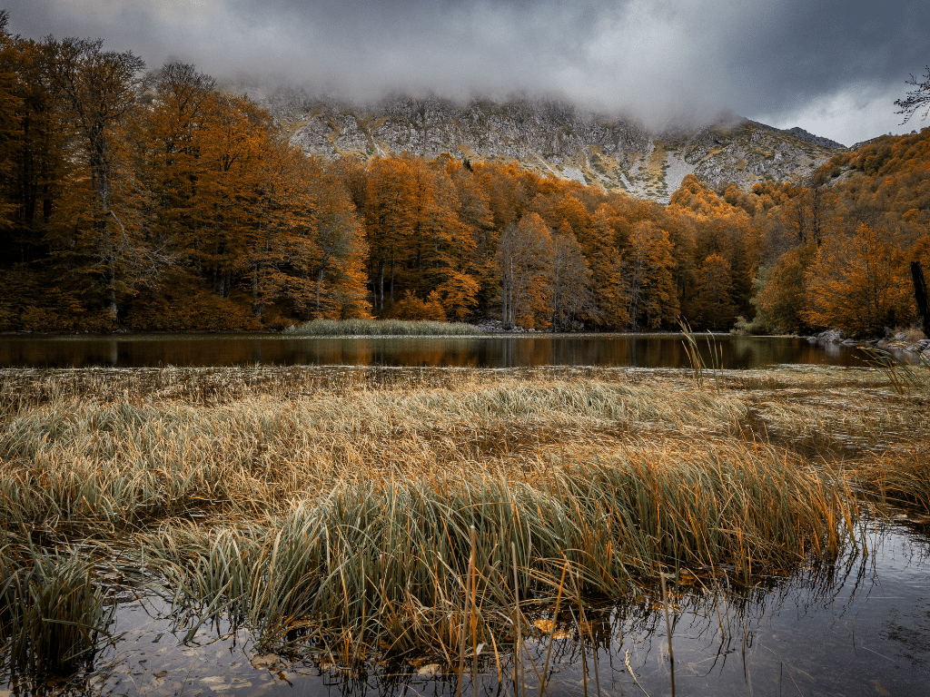 Arrenes © Apostolos Natsis