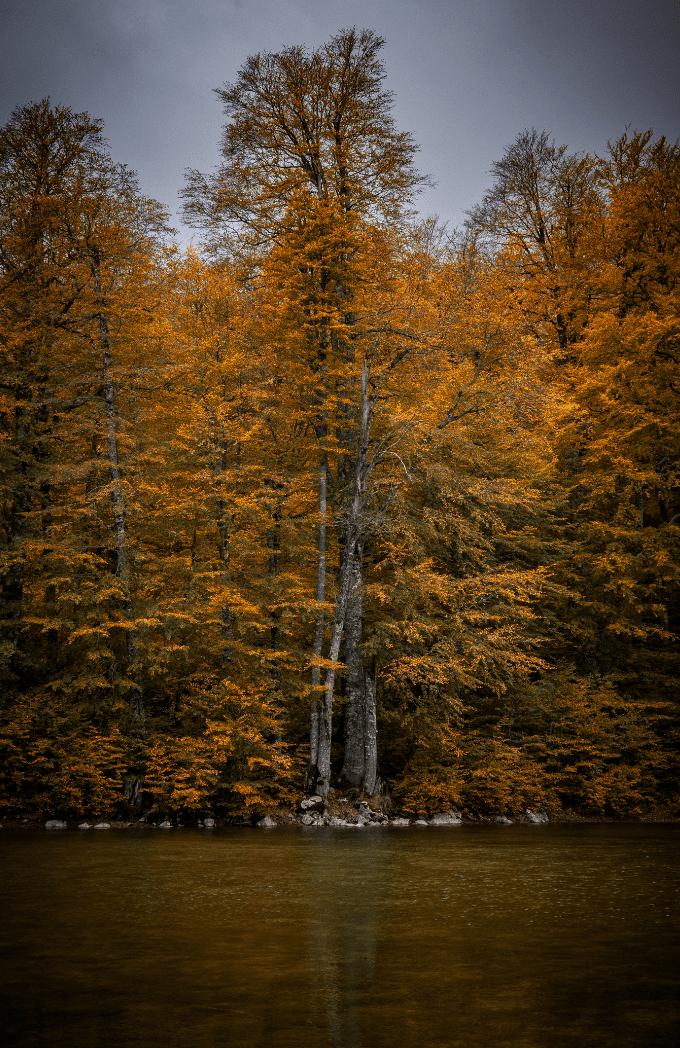γυρολιμνια Καστοριας01 © Απόστολος Νάτσης